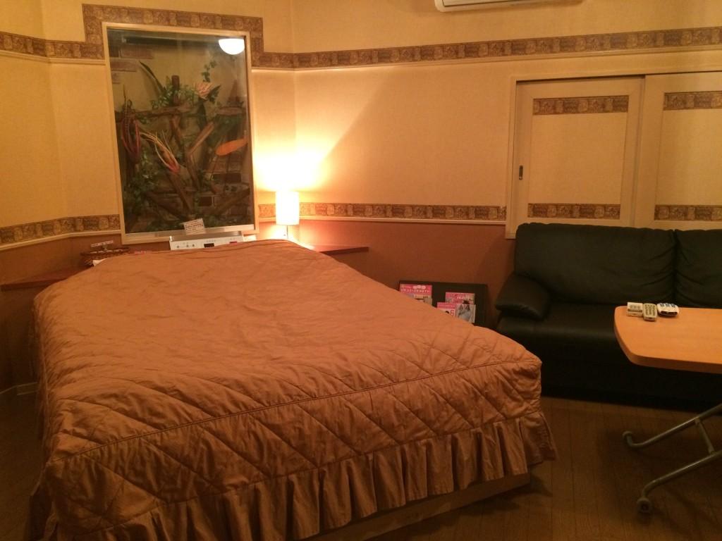 213号室  -小さなジャングルroom-